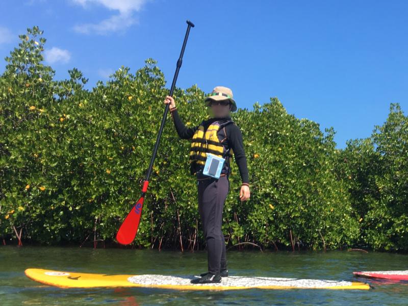 レンボンガン島マングローブ探検の服装