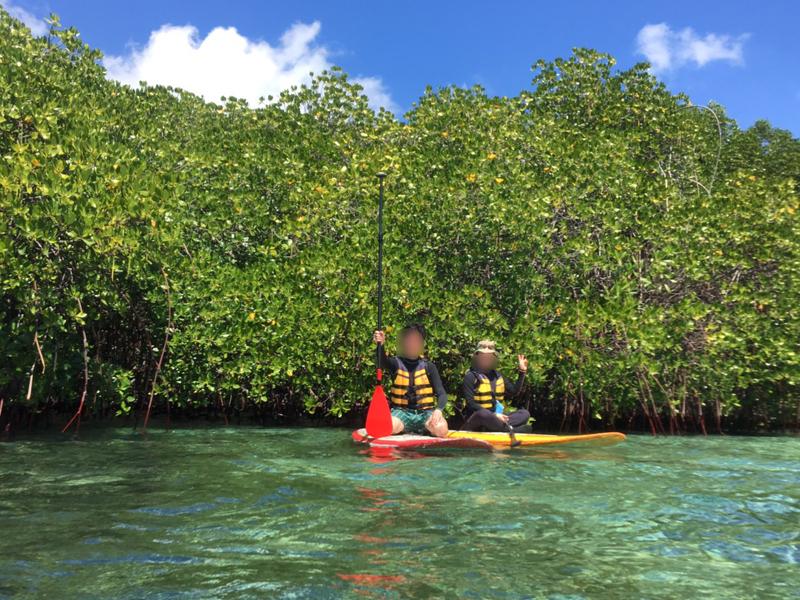 レンボンガン島マングローブ探検ツアー