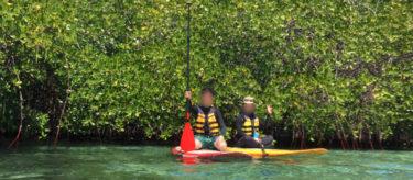 バリ倶楽部のレンボンガン島ツアー!マングローブSUPとシュノーケル満喫