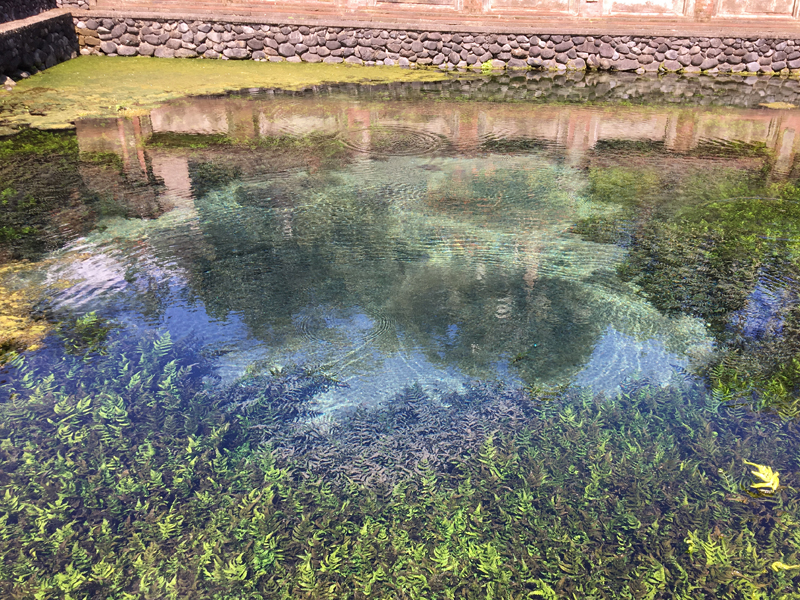 ティルタエンプルの聖水が湧く泉