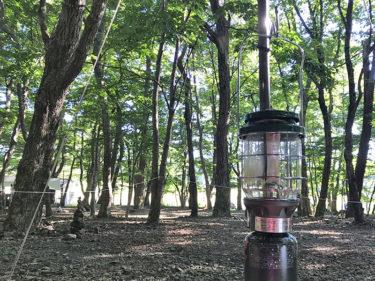 木陰が最高!SUMIKA CAMP FIELDデッキサイトで真夏にキャンプ【本栖湖スミカ】