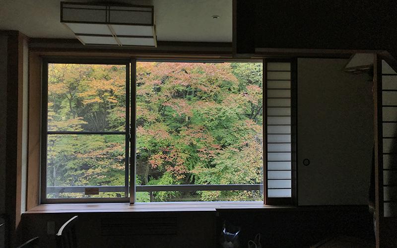 やまぐち館の客室から見える紅葉