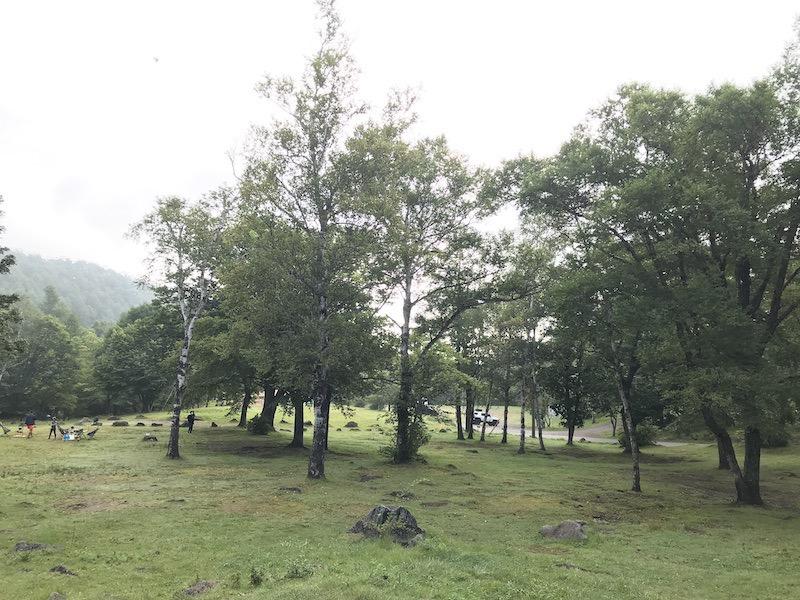 駒出池キャンプ場フリーサイト